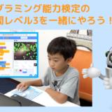 【オンライン講座】プログラミング能力検定レベル3の過去問を一緒にやろう!